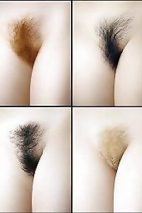 All Hairy Pictures